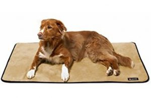 Big Shrimpy Pet Dog Landing Pad Kennel Crate Mat Small Clay Suede
