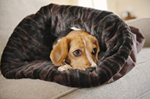 P.L.A.Y. Pet Lifestyle and You Snuggle Pet Bed