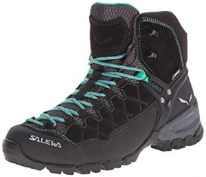 Salewa Men's ALP Trainer Mid GTX Technical Approach Shoes
