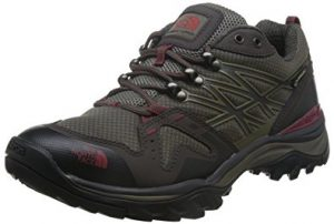 The NorthFace Hedgehog Fastpack GTX Hiking Shoes