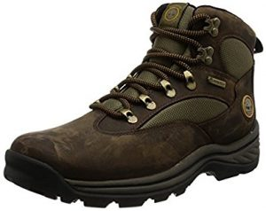 Timberland Men's Chocorua Trail Gore-Tex Mid Hiking Boots