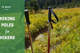 best hiking poles for hikers